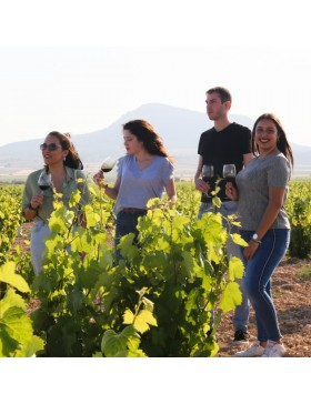 Wine Dominio Espinal Selección