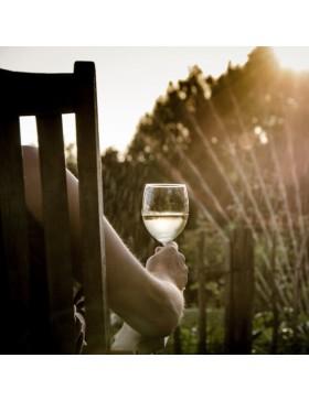 Wine Dominio Espinal Blanco