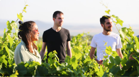 Escapade dans les vignobes Castaño