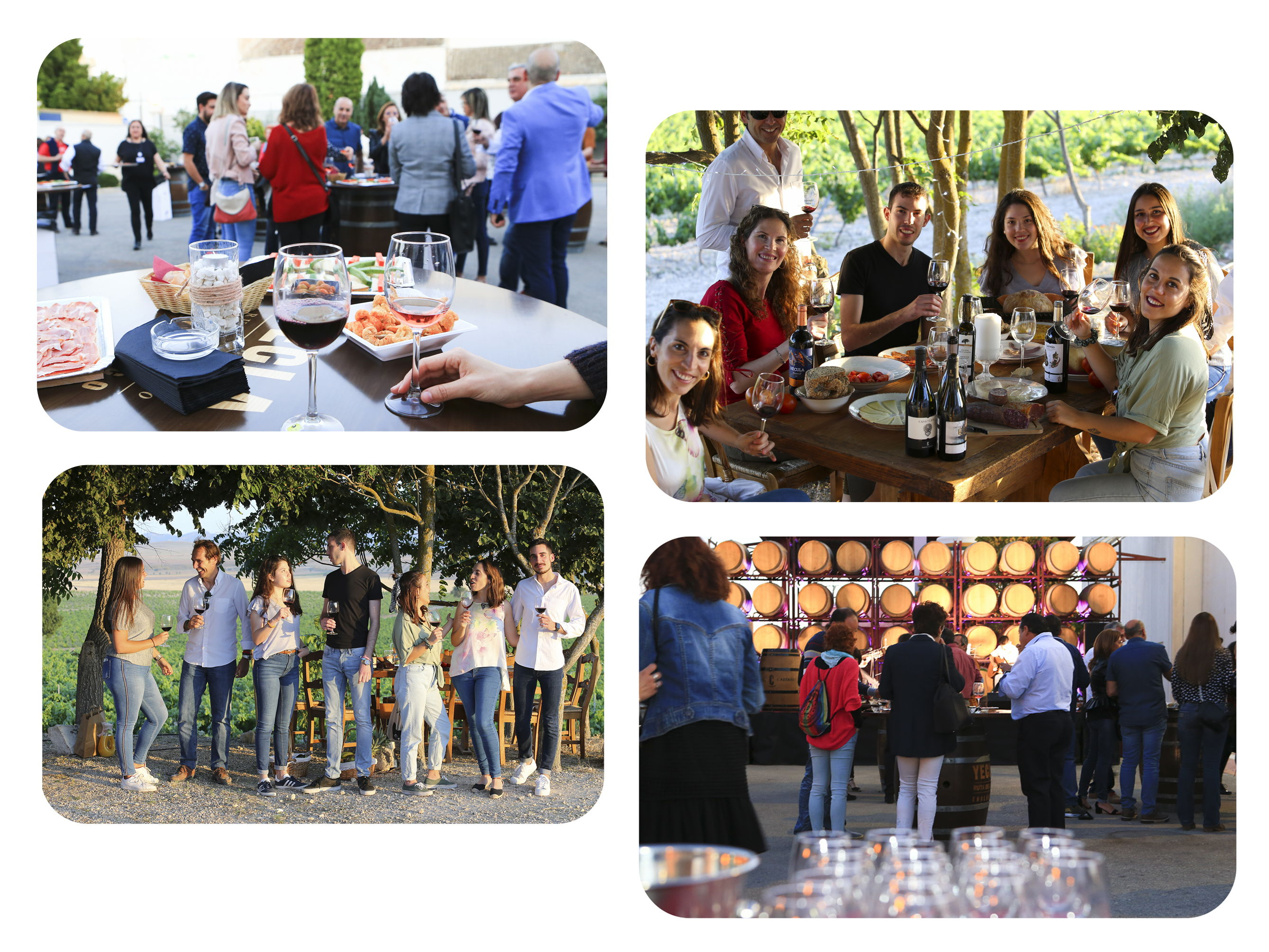 Tailored events in <bodegas Castaño